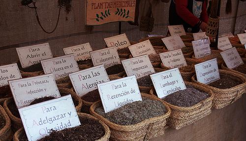 plantas medicinales feria