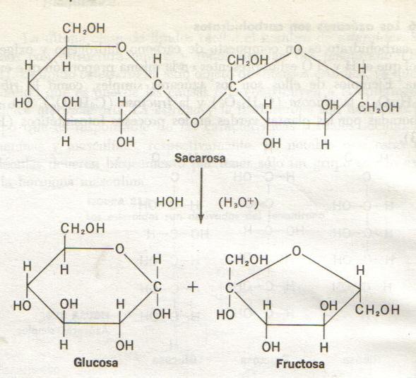 hidrolisis-de-la-sacarosa