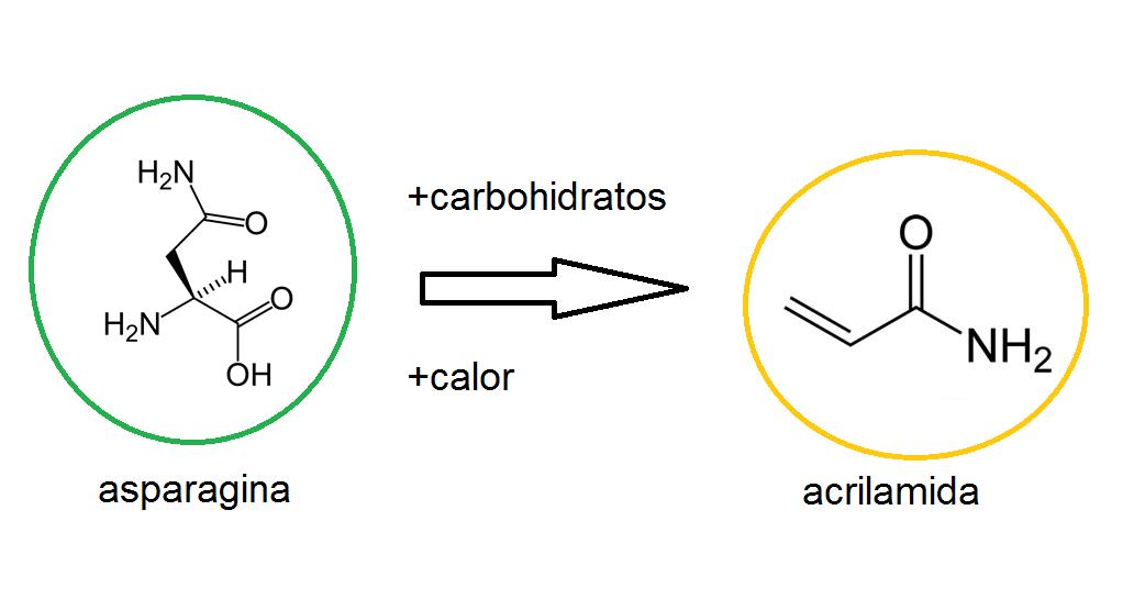 asparagina acrilamida