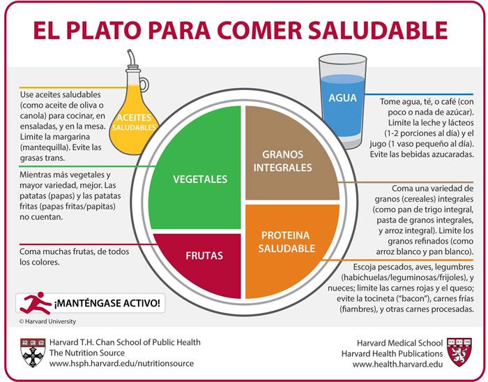 plato_saludable__harvard_ES